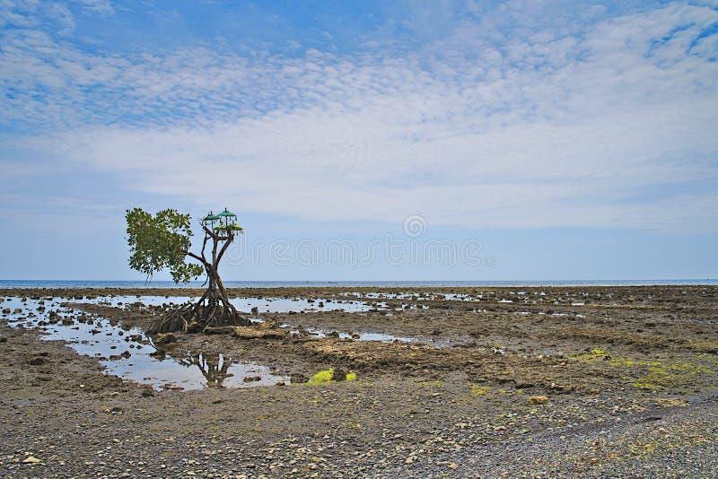 Praia de Pemuteran com o santuário hindu em Bali Indonésia imagens de stock