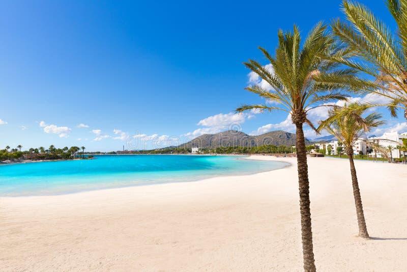 Praia de Platja de Alcudia em Mallorca Majorca fotos de stock royalty free