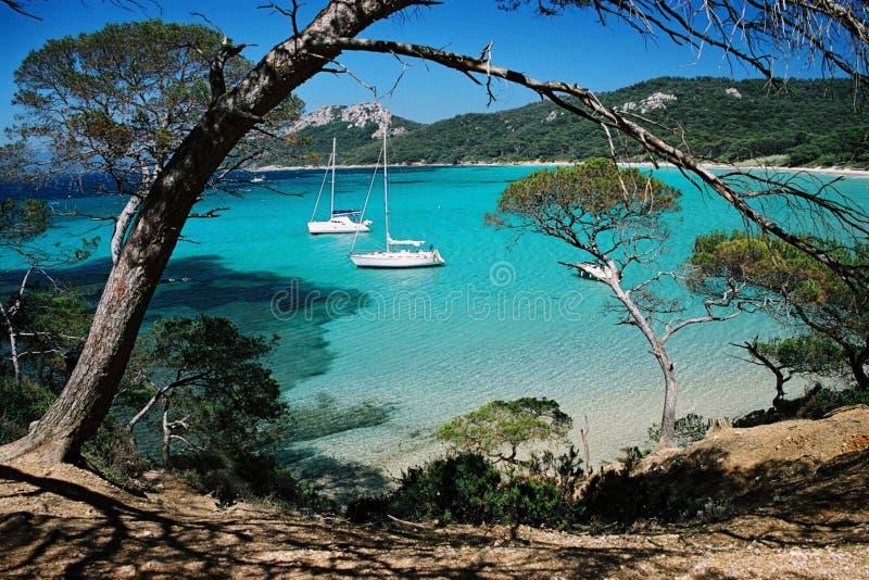 Download Praia de Porquerol foto de stock. Imagem de pinho, scenic - 105336