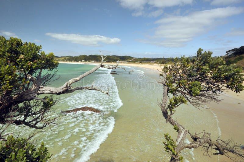 Praia de Prestine Costa de Tutukaka fotografia de stock royalty free