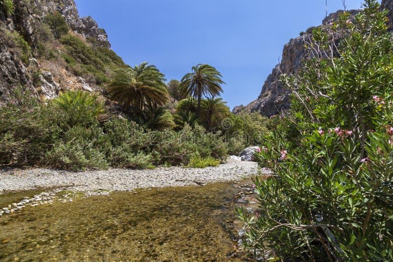 Praia de Preveli, Crete fotos de stock
