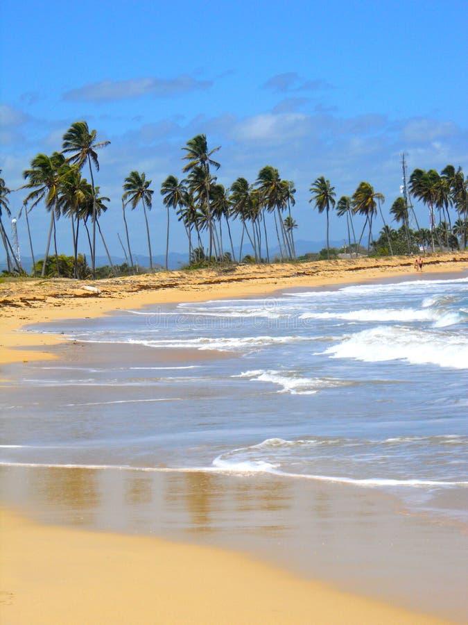 Praia de Punta Cana fotografia de stock