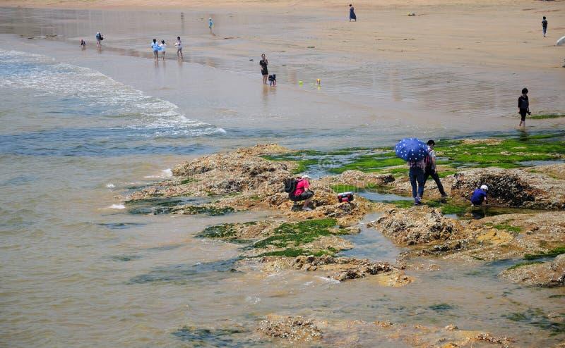 Praia de Qingdao China imagens de stock royalty free