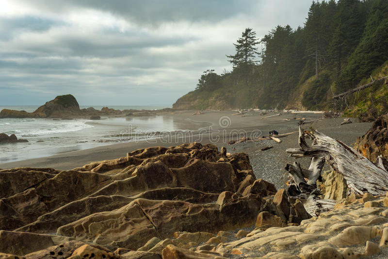 Praia de Rocky Pacific imagem de stock