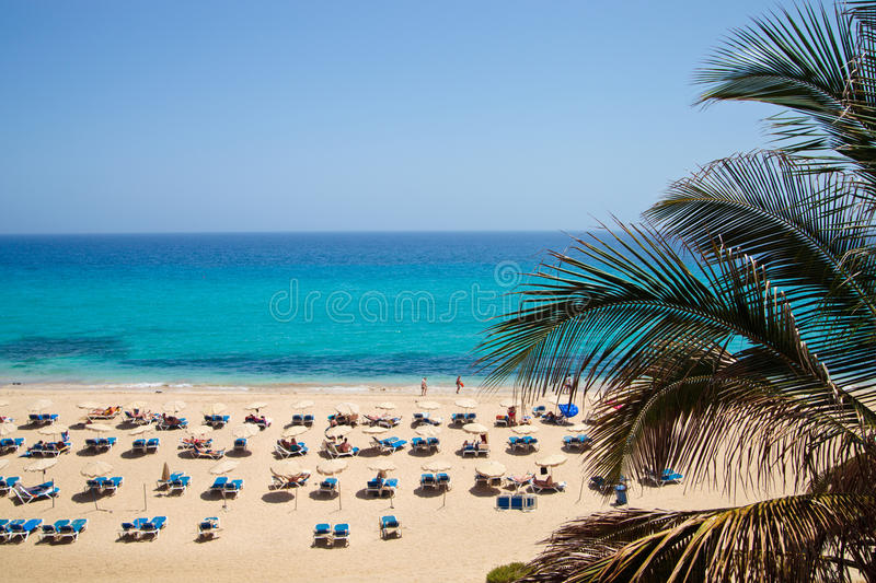 Praia de Sandy com loungers do sol foto de stock royalty free