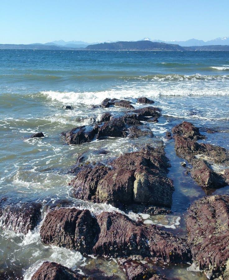 Praia de Seattle imagem de stock