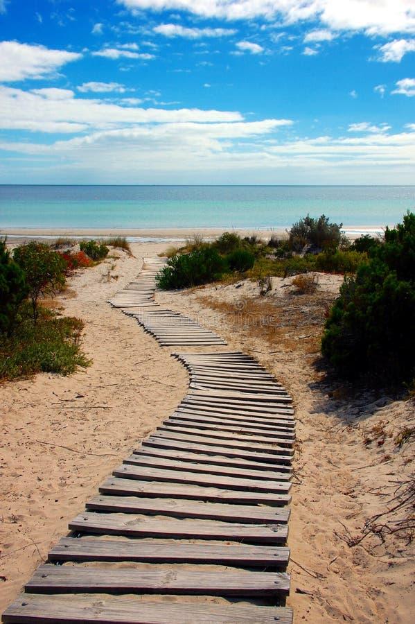 Praia de Snelling, ilha do canguru, Sul da Austrália. imagem de stock