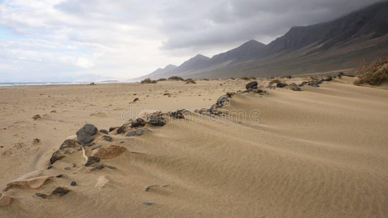 Praia de Surfboard imagem de stock royalty free