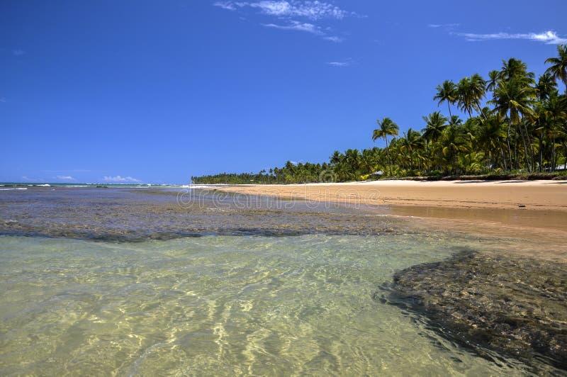 Praia de Taipu de Fórum, Baía (Brasil) imagens de stock