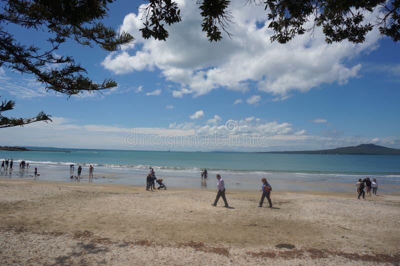 Praia de Takapuna fotos de stock