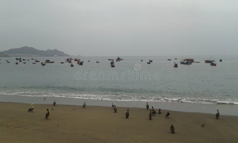 Praia de Taltal imagem de stock