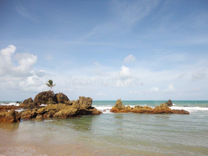 Conheça Tambaba: a Praia Referência de Naturismo no Brasil