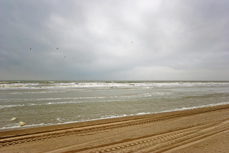 Praia de Texel foto de stock