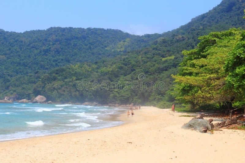 Praia de Trindade, Brasil imagens de stock royalty free