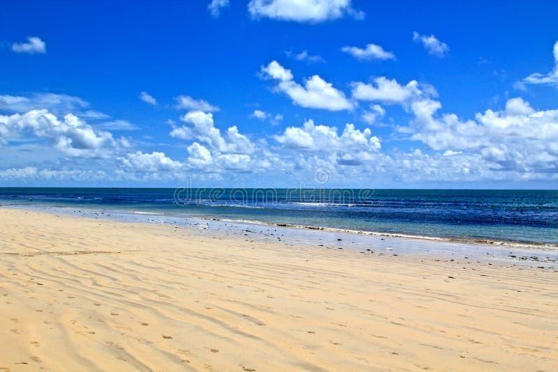Praia de Viagem da boa em Recife, Brasil fotos de stock