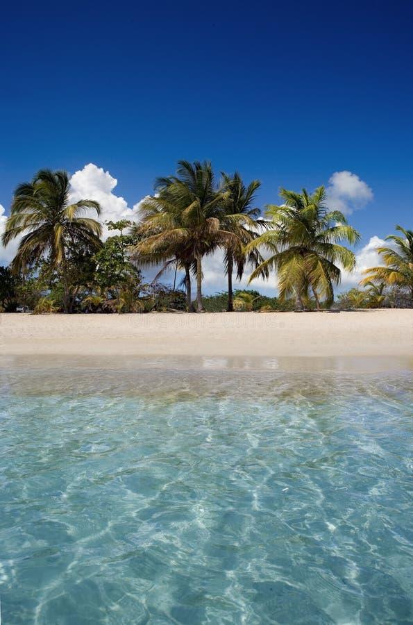 Praia de Viequez que olha dentro imagens de stock royalty free