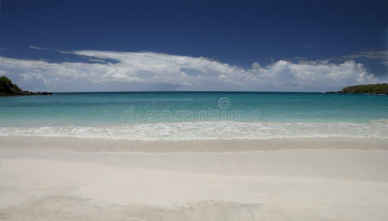Praia de Viequez que olha para fora fotografia de stock royalty free