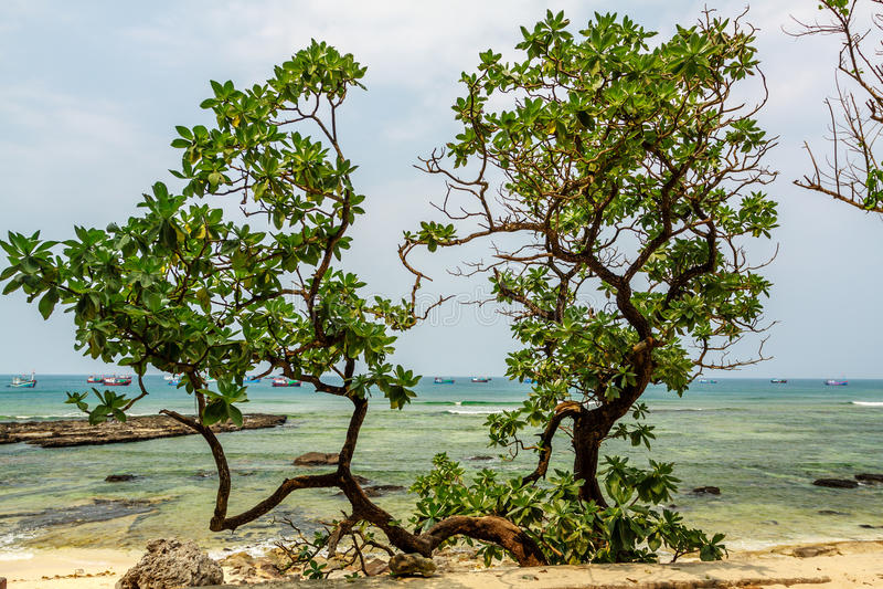 Praia de Vietname imagem de stock royalty free