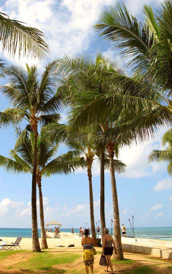 Praia de Waikiki - Honolulu fotos de stock