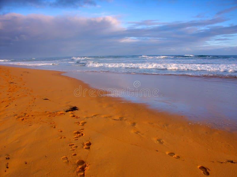 Praia de Warrnambool em Austrália fotos de stock
