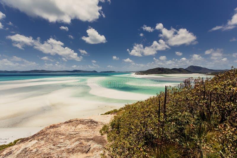 Praia de Whitehaven em Austrália imagem de stock