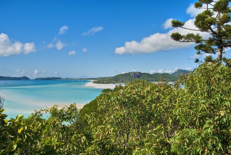 Praia de Whitehaven, Queensland, Austrália fotos de stock royalty free