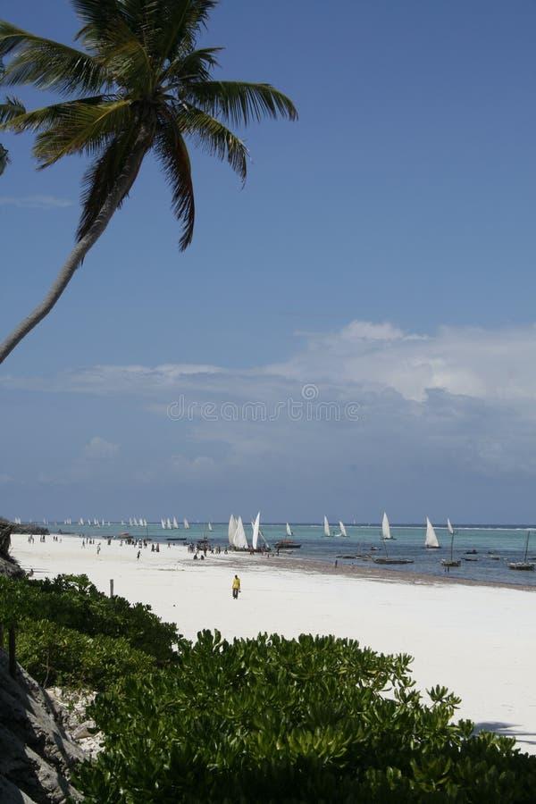 Praia de Zanzibar com barcos de vela imagens de stock