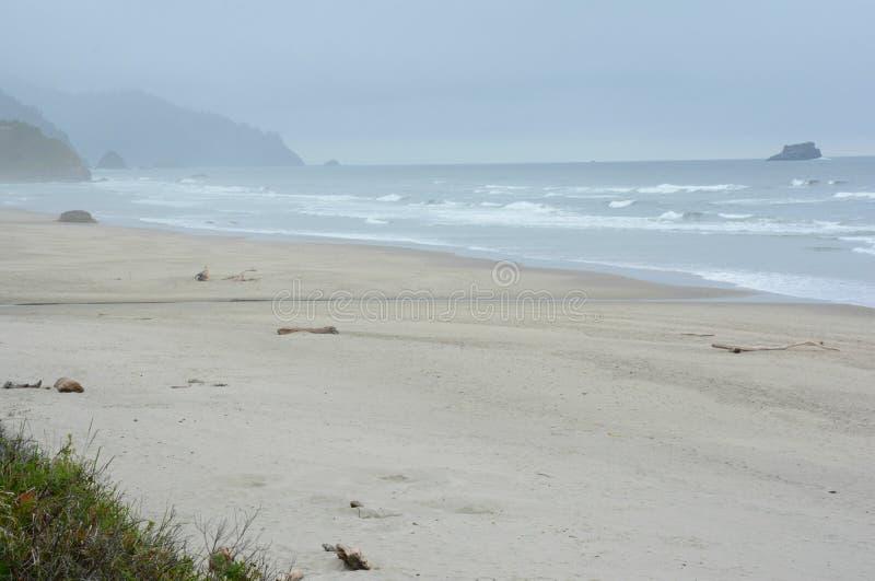 A praia do Arcadia negligencia - a costa norte de Oregon imagem de stock