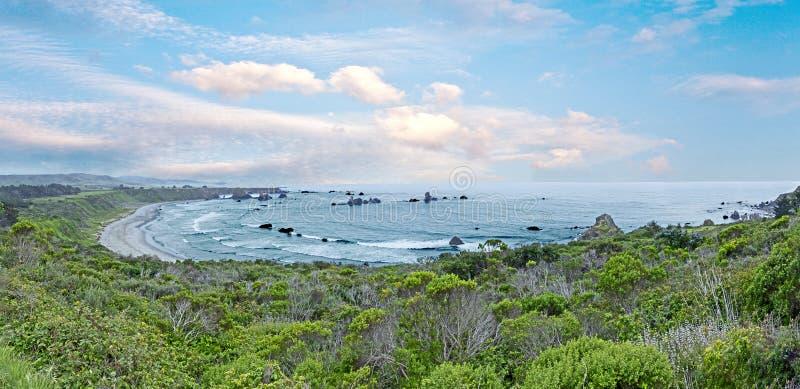 A praia do Big Sur custou a área no tempo nevoento, Califórnia, estrada nenhum 1 imagem de stock royalty free