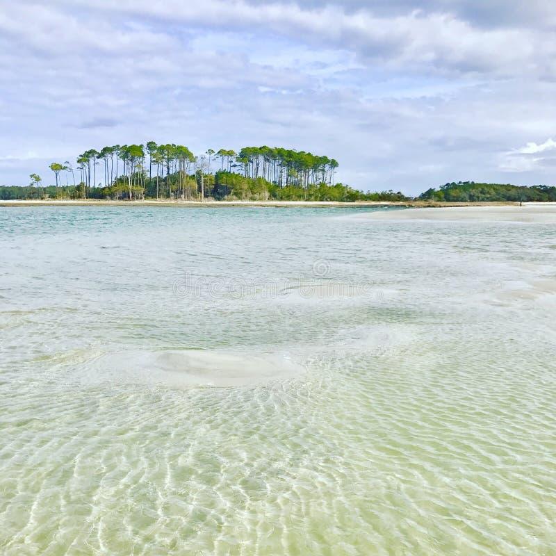 Praia do bosque da cereja imagens de stock royalty free