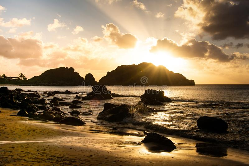 Praia do cachorro do por do sol imagem de stock