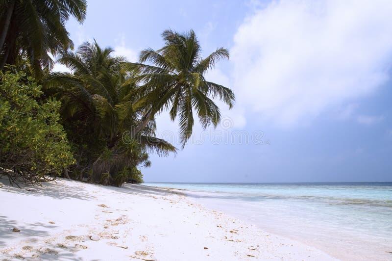 Praia do console tropical imagem de stock