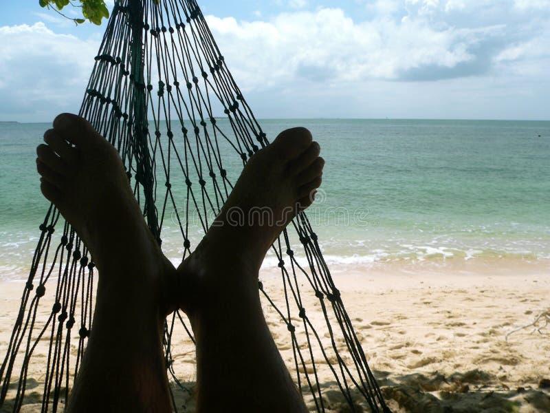 Praia do coral dos pés do Hammock foto de stock royalty free