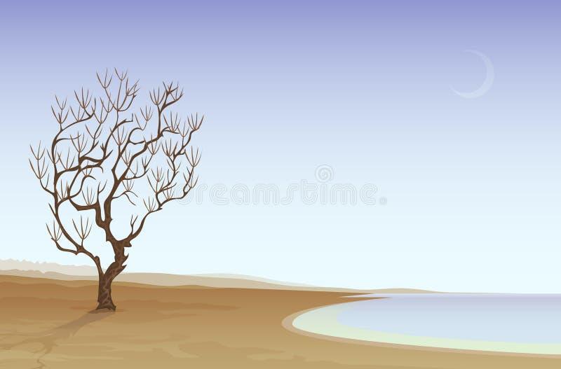 Praia do deserto ilustração do vetor