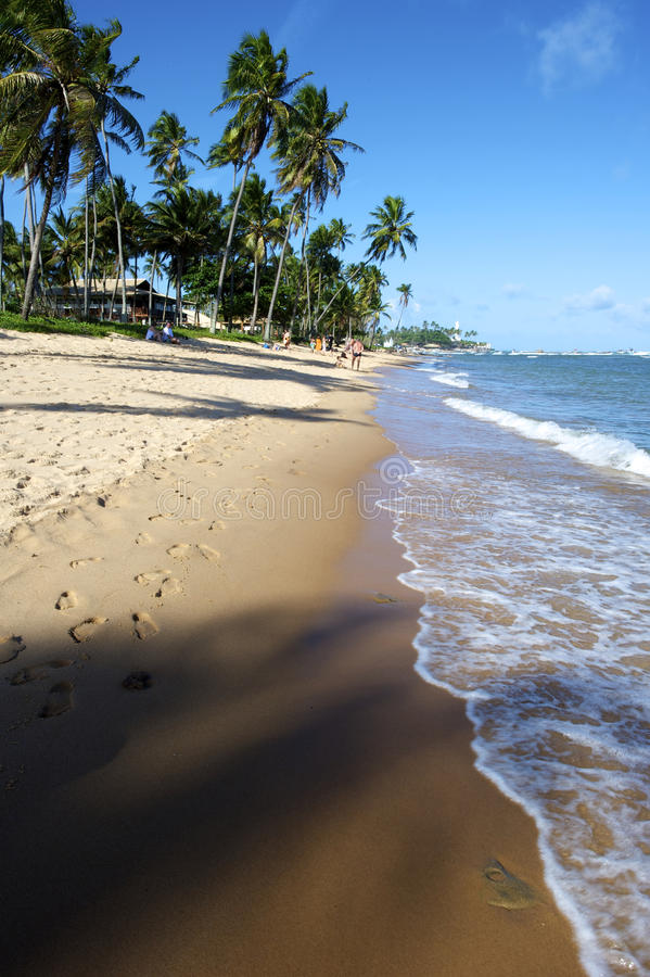 Praia do Forte, Bahia, Brazil royalty free stock photography