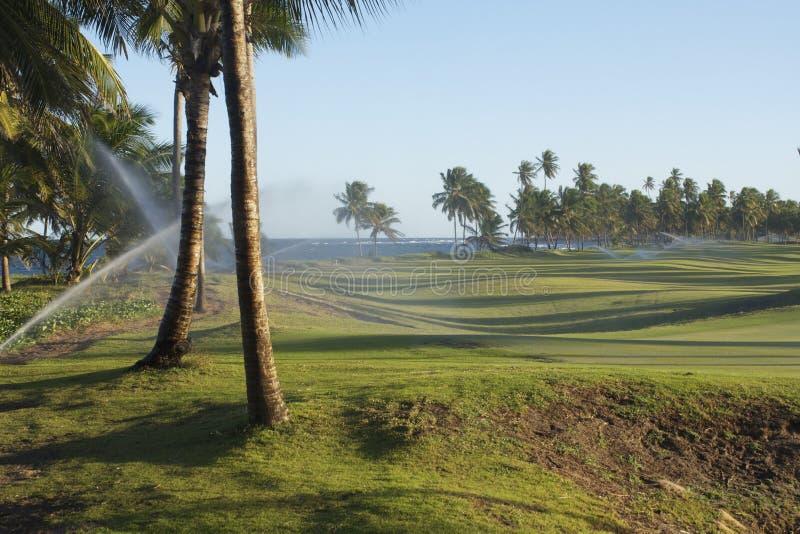Praia do Forte golf course. Sun setting on a Golf Course Praia do Forte in Bahia Brazil stock image
