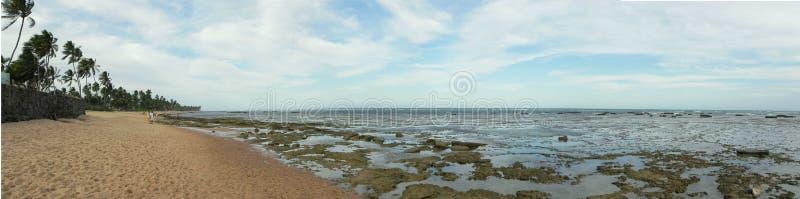 Praia do forte. Panorâmica da praia do forte em Salvador, Bahia stock photos