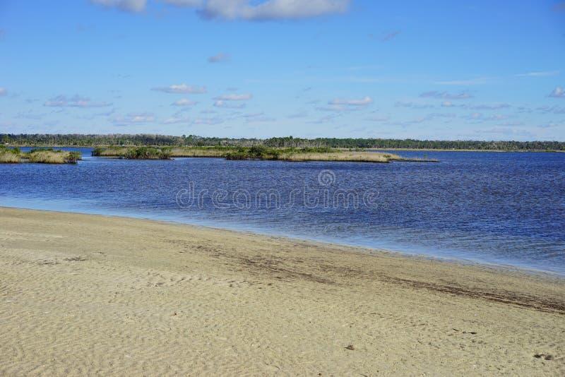 Download Praia Do Hernando De Florida Imagem de Stock - Imagem de clearwater, hernando: 80100555