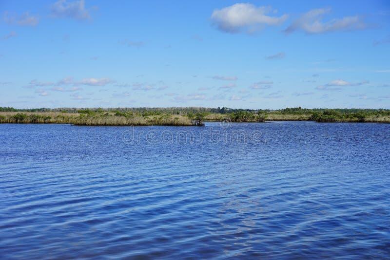 Download Praia Do Hernando De Florida Imagem de Stock - Imagem de feriado, dinâmico: 80100567