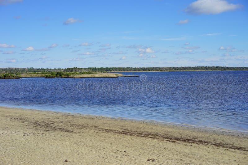 Download Praia Do Hernando De Florida Foto de Stock - Imagem de petersburg, mergulho: 80100572