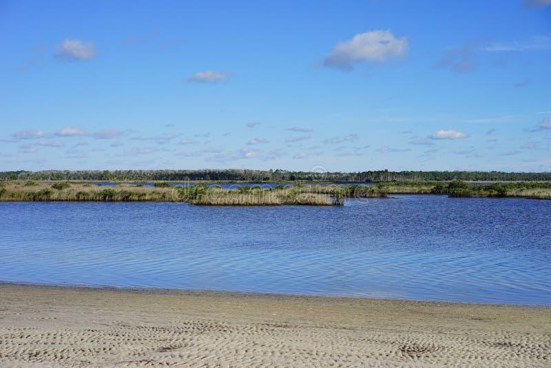 Download Praia Do Hernando De Florida: Lagoa Foto de Stock - Imagem de vida, paradise: 80100048