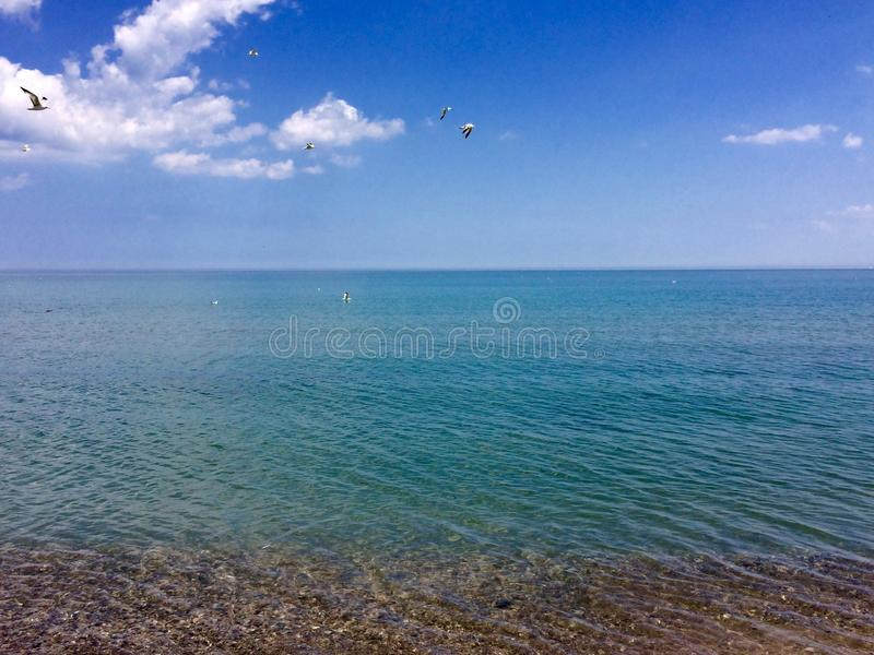 Praia do Lago Michigan foto de stock royalty free