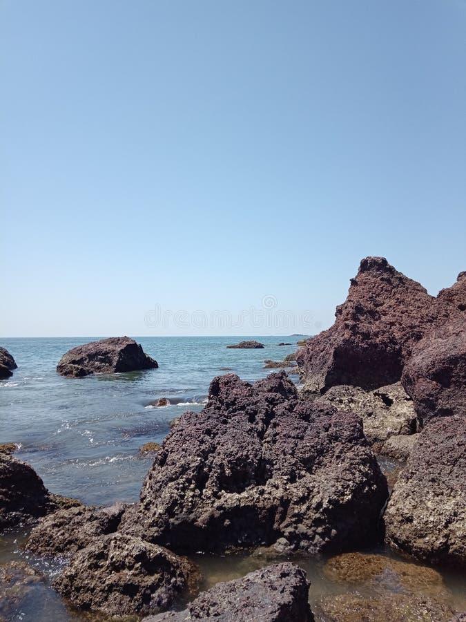 Praia do macaco imagens de stock