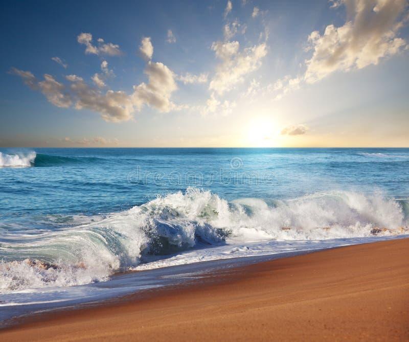 Praia do mar imagens de stock royalty free