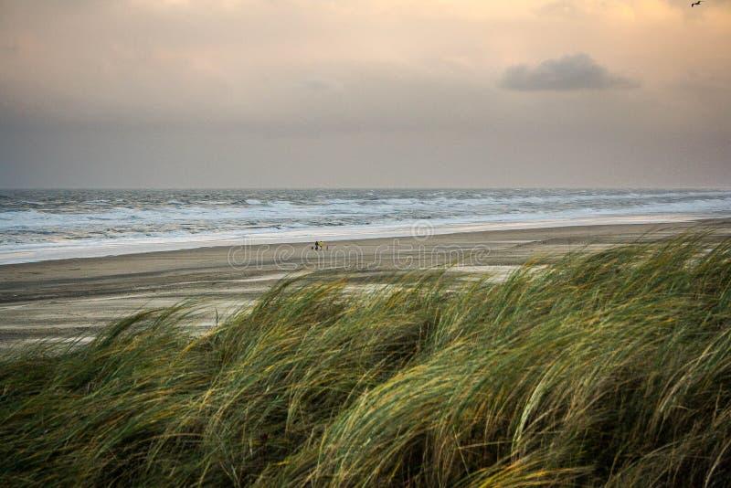 Praia do Mar do Norte no dia tormentoso imagens de stock royalty free