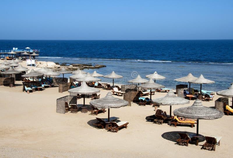 Praia do Mar Vermelho fotografia de stock royalty free