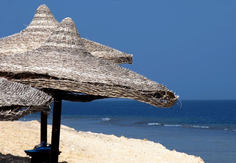 Praia do Mar Vermelho - Egipto fotografia de stock royalty free
