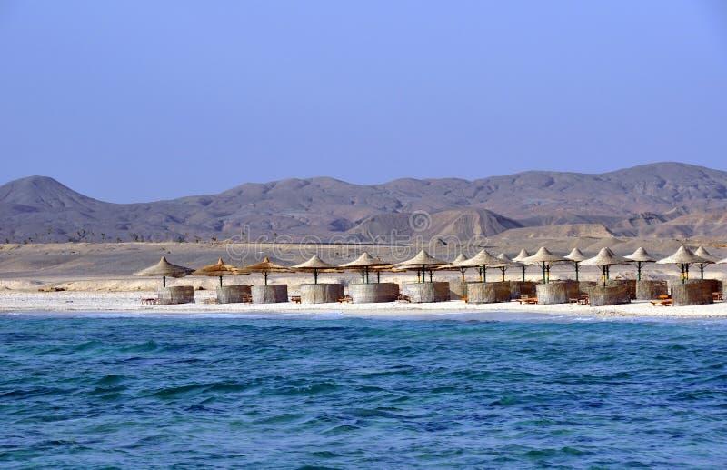Praia do Mar Vermelho - Egipto imagem de stock royalty free