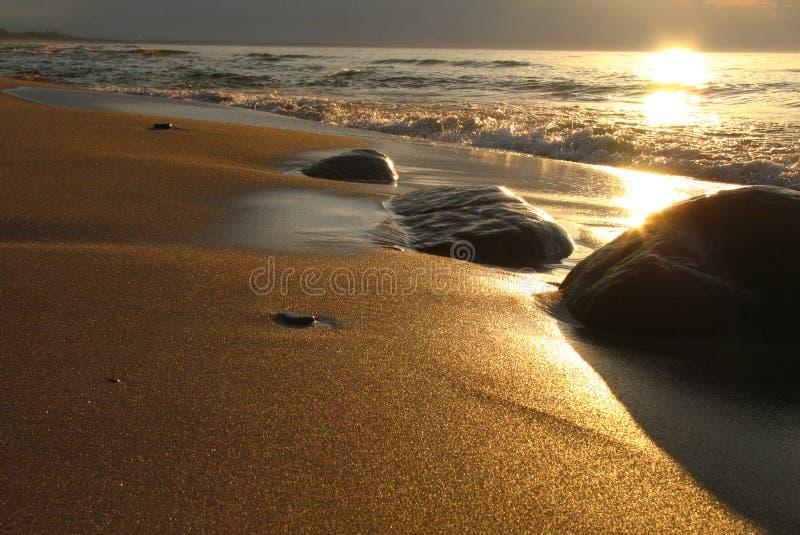 Praia do ouro fotos de stock