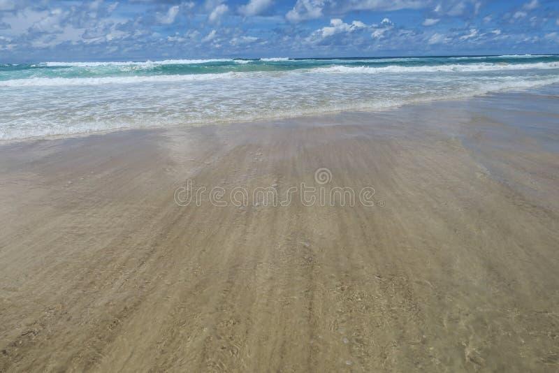 Praia do paraíso dos surfistas, Gold Coast, Queensland, Austrália fotografia de stock royalty free